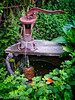 The Pump (lorinleecary) Tags: cambria centralcoastcalifornia flowers foliage green machinery rust water wood
