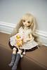 DSC_0223 (_sio___) Tags: bjdoll bjd bluefairy hana doll usd