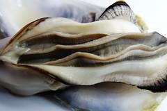 DSC00062 (muzina_shanghai) Tags: 牡蠣 蒸し牡蠣 oyster