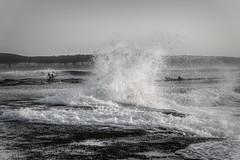 Surfers Rule DSC_4269 (BlueberryAsh) Tags: fffplus torquay beach seascape surf surfer pointroadknight anglesea ocean waves monochrome people water coast nikond750 nikon24120