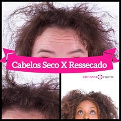 Cabelo Seco X Ressecado: Qual a Diferença? (patricinhaespertablog) Tags: cabelosmuitoressecados cabelosressecados cabelossecos cabelossecoseressecadosdiferença hidrataçãocabelos ressecados secos secosouressecados