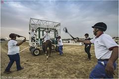 DSC03065 copy (Services 33159455) Tags: qatar doha horse racing qrec emir horseracing raytohgraphy
