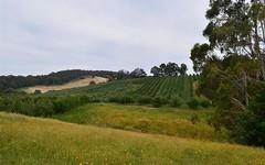 00 'Muttaroo' Mines Road, Batlow NSW