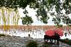 Westlake 西湖 (MelindaChan ^..^) Tags: westlake 西湖 hangzhou china 杭州 people willow tree water lake chanmelmel mel melinda melindachan seat sit chair sudi umbrella rain raining rainy
