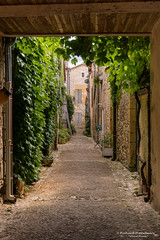 Long and narrow historical alleys - Monpazier/FR (About Pixels) Tags: 0719 10001500ac 2017 aboutpixels fr france frankrijk lpbvf latemiddeleeuwen latemiddleages lesplusbeauxvillagesdefrance mnd07 middeleeuwen monpazier nikond7200 nikon nouvelleaquitaine summerseason zomerseizoen algemeen alley anno1250 appliedart appliedarts architecture architectuur art cityscape collecties historie infrastructure infrastructuur juli july kunst medieval stadsgezicht stedelijk steegje toegepastekunst urban weg history