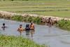 J7. Tissamaharama - Baignade (Darth Jipsu) Tags: landmark ceylan landscape srilanka tissamaharama bathing river ceylon southernprovince lk