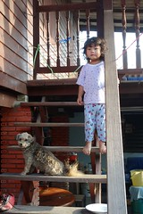 girl with her dog on the stairs (the foreign photographer - ฝรั่งถ่) Tags: girl child dog wooden stairs khlong thanon portraits bangkhen bangkok thailand sony rx100