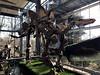 boxtel_1_041 (OurTravelPics.com) Tags: boxtel skeleton stegosaurus middle floor dinohal building oertijdmuseum