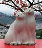 "Onomichi-031 (photozaki) Tags: ""dogs cats"" dog dogs inu cat cats neko shikoku japan ohenro88 ohenro pilgrimage"