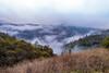 DSCF6027.jpg (RHMImages) Tags: xt2 16mm foresthillbridge landscape bridge fuji fog auburn fujifilm