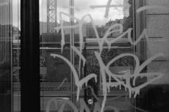 Lost in translation. (35mm) | Kentmere 400. (samuel.musungayi) Tags: 35mm 24x36 135 film analog pellicule pelicula negativo negative négatif scan monochrome mono noir et blanc black white photography photographie fotografia camera lense home candid life light samuel musungayi kentmere 400 urban