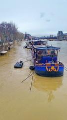 270 Paris Janvier 2018 - la Seine en crue en aval du Pont des Arts (paspog) Tags: paris janvier januar january 2018 seine rivière fleuve crue inondation pontdesarts