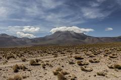 San Pedro de Atacama (© Bárbara Cabello P.) Tags: sanpedrodeatacama atcama desiertodeatacama chile
