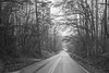 Misty country road - Anderson S.C. (DT's Photo Site - Anderson S.C.) Tags: canon 6d 24105mml lens upstate andersonsc southcarolina bw monochrome rural country drive foggy misty rainy weather fog stream scenic nostalgic cloudy landscape america usa southern
