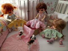 Happy Mail Day!!! (TutuBella) Tags: madebybarbara barbaragehring beautiful bunny cardigans spring springtime pukifee fairyland dolls daisydayes puppy iplehouse dog happymailday sweet sweater bunnies rabbit love tinybjd