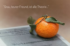 All theory is gray, my friend... (raisalachoque) Tags: book 7dwf stilllife closeup flora tangerine german quotes goethe