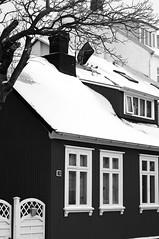 29 (bw) (Peter Rea 13) Tags: iceland reykjavik city snow winter urban architecture art artistsontumblr biutifulpics imiging lensblr lightisphotography originalphotographers originalphotography photographersontumblr peterreaphotography photography pws p58 streetphotography submission street telescopical xonicamagazine ycphotographs blackandwhite house tree monochrome