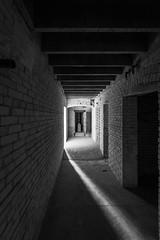 IMGP7405-Edit (Drew's Arcade) Tags: traverse city state hospital michigan pure abandoned bnw balck white