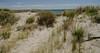 Puerto Madryn (nebulous 1) Tags: puertomadryn argentina patagonia golfonuevo southatlanticocean atlanticocean beach water nikon nebulous1 glene