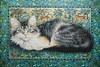 Katzen Impression (sindyxz) Tags: fxschmid 800teile artnr980064 jahr1989 lesleyanneivory copyrightseurope ivorycats prestige puzzle jigsaw katzen tiere katzenimpression