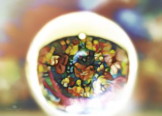 refraction incapsulation