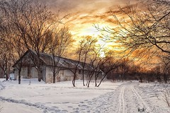 180131-22 La grange d'or (clamato39) Tags: domainemaizerets provincedequébec québec canada ciel sky clouds nuages coucherdesoleil sunset barn grange hiver winter snow neige