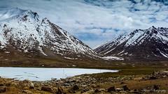 20150623_143258-2 (Fitour Photography) Tags: ladakh bikeride leh manali sarchu keylong dallake dal kashmir srinagar mountains snowcapped snow rohtang pass mountainpasses colddesert nubravalley royalenfield travel