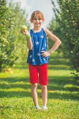 Apple Picking @ Hillcrest Orchards (crashmattb) Tags: hillcrestorchards applepicking september 2017 georgia ellijay northgeorgia canon70d tourism abigailjaclyn