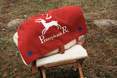 2nd Pennsylvania Regiment (Jen_Vee) Tags: red logo group regiment troop bag satchel pack cloth deer pennsylvania continental stool wooden haversack seat camp acroutament stars