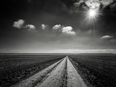 La senda (una cierta mirada) Tags: path paths sun sunset skyclouds clodscape road nature landscape bnw blackandwhite outdoors