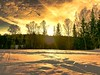 Sunset reflections on the snow (evakongshavn) Tags: sunset reflections snow winter winterwonderland winterwald winterlandscape goldenscape goldenlight golden light lightopia yellow orange vividorange vivid snowscape dreamscape sun letthesunshinein sunshine sunsets tree