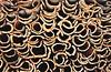 Cork (pedrik) Tags: alentejo portugal cork bark nikkoraf24mmf28d fm2 film 52022018 fujichromevelvia50rvp fuji velvia hugin renewable digitizedbyslr