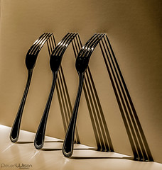 Fork Shadows (peterwilson71) Tags: forks shadows light stilllife dark reflections canon6d cutlery