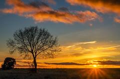 sunset (dnieper) Tags: sunset puestadesol calzadadelcoto león spain españa