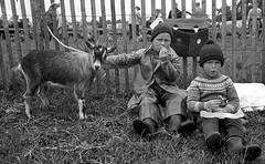 At the local show (theirhistory) Tags: boys children kids pet animals eating fence coat wellies trousers grass boots raincoat mac waterproof waterprooftrousers