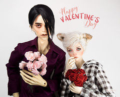 Happy Valentines Day (tangy_melon) Tags: dollzone merlin angodoll hazal universedoll 72cm hybrid 62cm b60005 anthro white hair dog doll bjd ball jointed dolls valentines holiday pink roses red