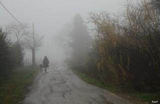 IMG_6716- Sale la nebbia ...