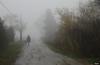 IMG_6716- Sale la nebbia ... (Betti52) Tags: stradadicampagna nebbia post18022018