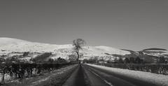 Scotland in winter (picsbyCaroline) Tags: scotland winter road journey car cold weather blackandwhite unitedkingdom landscape