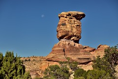 The Moon, a Sandstone Rock Column and a Raven (Canyonlands National Park) (thor_mark ) Tags: azimuth274 blueskies canyonlands canyonlandsnationalpark capturenx2edited centralcanyonlands colorefexpro coloradoplateau confluenceoverlooktrailhead day4 desertlandscape desertmountainlandscape desertplantlife highdesert intermountainwest landscape layersofrock lookingwest moon nature nikond800e outside portfolio project365 raven rollinghillsides sr211 sandstonecolumn sandstonepillar sandstonerockcolumn stateroute211 sunny theneedlesdistrict trees utahhighdesert utahnationalparks2017 utahstateroute211 ut unitedstates