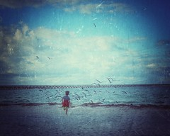 She taught me to fly (Mister Blur) Tags: boy running sea seagulls flying shetaughtmetofly love progreso beach yucatán méxico snapseed nikon d7100 35mm