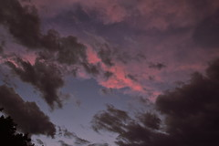 In pink (Images by Jeff - from the sea) Tags: 7dwf sunset pinksunset clouds sky storm bluesky nikon tamronsp2470mmf28divcusd d5500 dusk twilight 2018 january bundaberg queensland australia prettyinpink crazytuesdaytheme