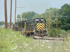 DSC07674 (mistersnoozer) Tags: lal alco c425 locomotive shortline railroad train