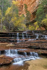 *Archangel Falls @ Classic view* (Albert Wirtz @ Landscape and Nature Photography) Tags: water usa albertwirtz utah america tree fall autumn herbst nordamerika rocks felsen redrock redrockcountry springdale zion nationalpark zionnp zionnationalpark natur nature landscape paesaggi paysages landscapephotography landschaftsfotografie vertikal vertical southwest usasouthwest waterfalls herbstlich archangelfalls subway kaskaden cascade wandern hiking travel reisen exploring explore longexposure langzeitbelichung washingtoncounty southutah colobterraceroad greatphotographers greaterphotographers