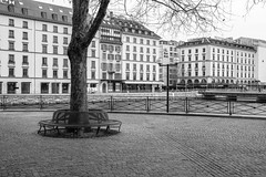 banc (fotoleder) Tags: 2018 fotoleder nuageux eau banc place vent lac rhône genève flederma ville rade hiver ge suisse ch