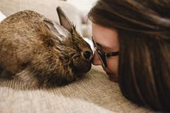 Oscar and Mum having a moment (garethottywill) Tags: rabbit cute love fluffy fuji fujifilm xt2 classicchrome fujinon16mm