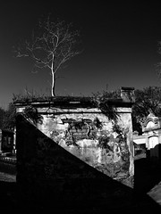 Shadow and light in the Lafayette Cemetery. (explored) (isaacullah) Tags: