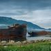 Rusty ships at Russkaya bay
