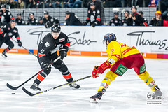 Nuernberg Ice Tigers - Duesseldorfer EG