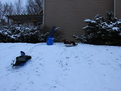 3 Kids Sledding Video (Jaimee and Brian) Tags: avalon tenyears austin sevenandahalfyears avery sixyears video illinois
